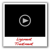 Ligament-treatment-in-dogs