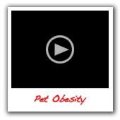 Pet-obesity